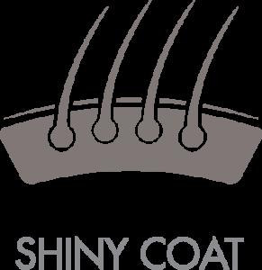 shinycoat